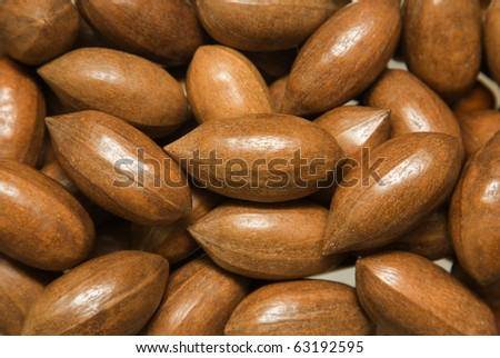 ripe pecan nuts background; - stock photo