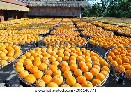 ripe persimmons with full frame/ripe persimmons - stock photo