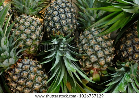 ripe pineapples on wooden table background