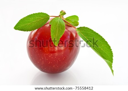ripe plums on a white background