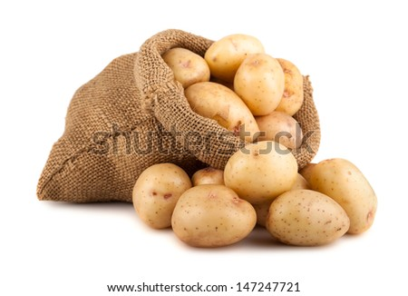 Ripe potatoes in burlap sack isolated on white background - stock photo