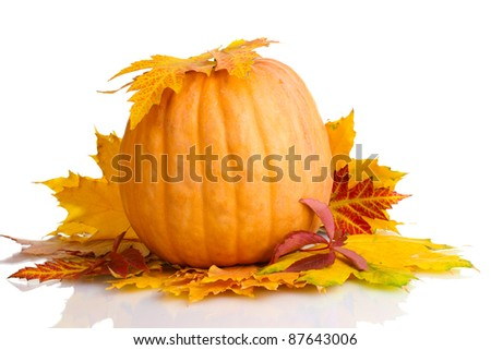 ripe pumpkin and autumn leaves isolated on white