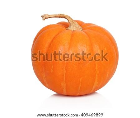 Ripe pumpkin on white background - stock photo