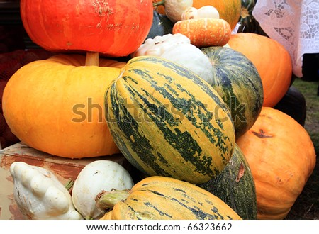 ripe pumpkins on rural market - stock photo