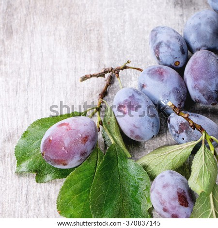 Ripe purple plums with branch and leaves over gray wooden background. Square image with selective focus - stock photo