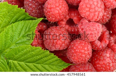 Ripe raspberry with leaf as background - stock photo