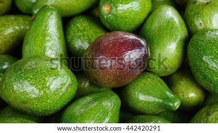Ripe red avocado in bunch of green avocados. Stack of delicious fruits. - stock photo
