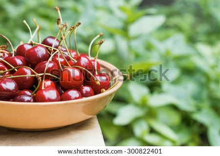 ripe red cherries in a rustic clay plate on a background of green garden - stock photo