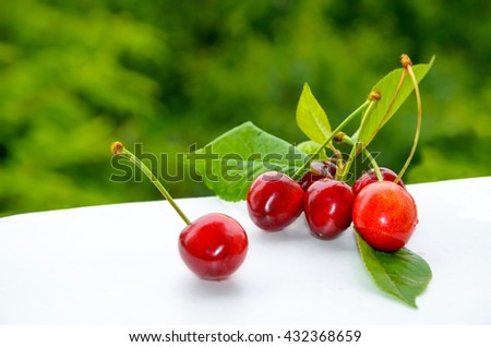 Ripe red cherries on green trees background - stock photo