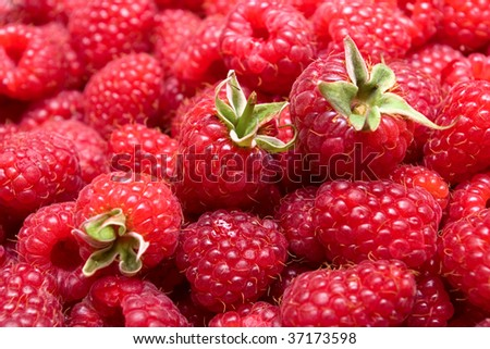 Ripe red raspberry background