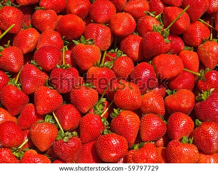 Ripe Red Strawberries at a Farmers Market - stock photo