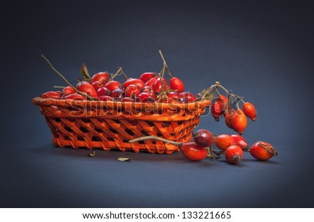 Ripe roses hip (dog rose fruit) in a basket. - stock photo
