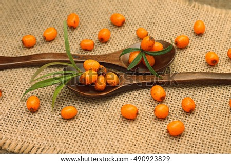 Ripe sea buckthorn berries in wooden spoons, close-up