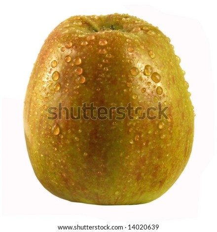 Ripe striped apple with drops of water on a skin