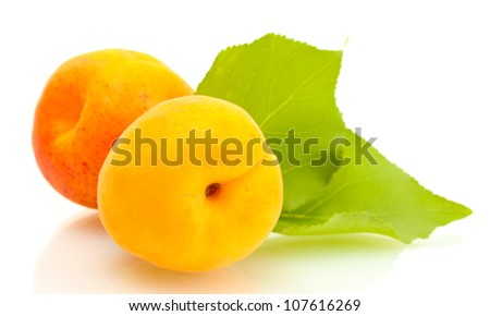 ripe sweet apricots with green leaves isolated on white - stock photo