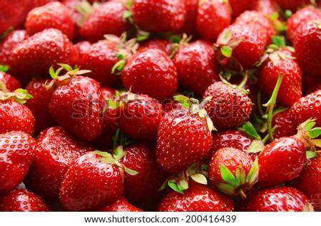 Ripe sweet strawberries close-up - stock photo