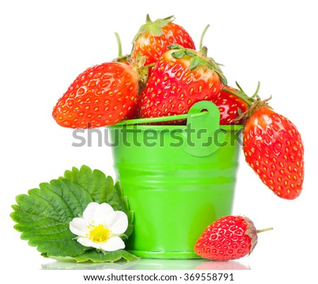 Ripe sweet strawberries with leaf and bloom in the bucket isolated on a white background - stock photo