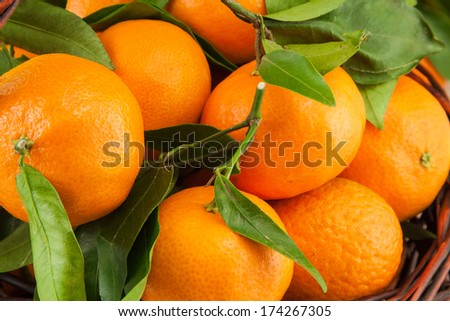 ripe tangerines with leaves as a background - stock photo