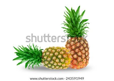 Ripe tasty pineapple isolated on white background - stock photo