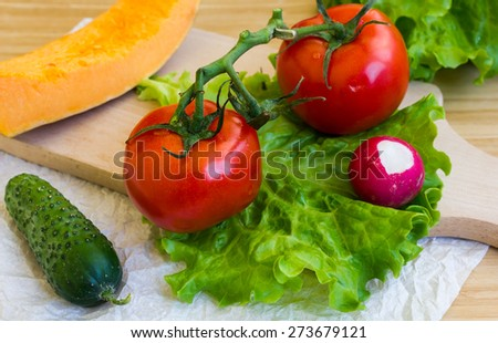 Ripe tomatoes, cucumbers pumpkins and radishes on a kitchen Boards - stock photo