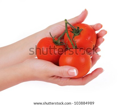 ripe tomatoes in female hands isolated on white