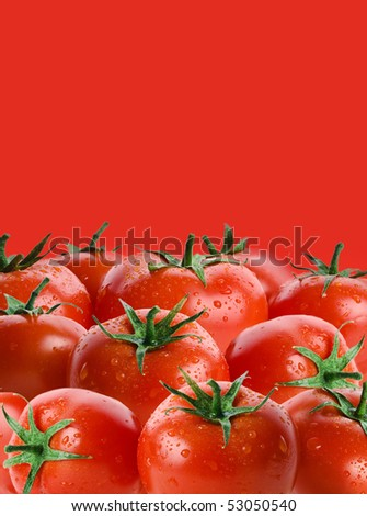 ripe tomatoes with copy space on red background - stock photo