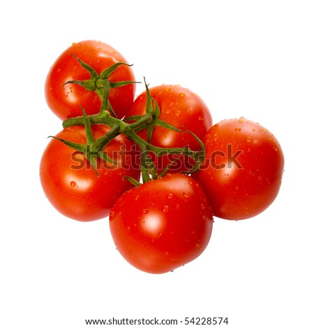 Ripe Truss Tomatoes isolated over white background - stock photo