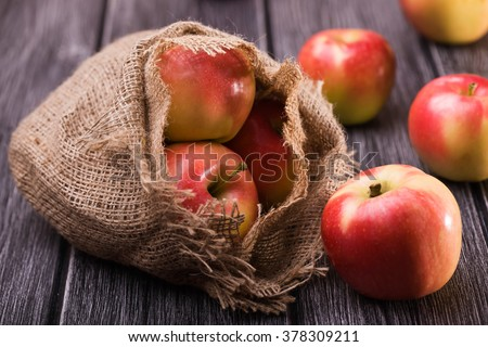 Ripe unpeeled juicy red yellow apples fall out of homespun sackcloth bag on grey wooden table, horizontal photo - stock photo
