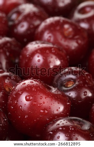 ripe washed cherries close up, organic food - stock photo