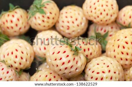 Ripe White strawberries, pineberries, closeup - stock photo