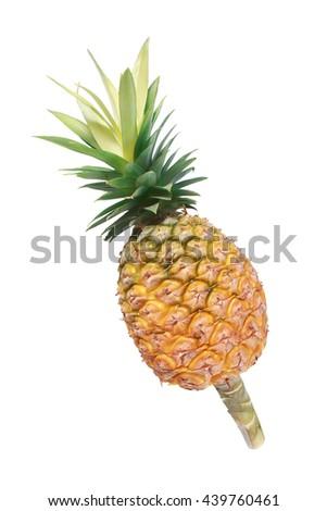 Ripe whole pineapple isolated on white - stock photo