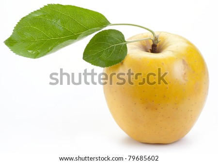 Ripe yellow apple with green leaves. - stock photo
