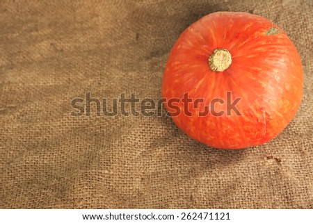 Riped orange pumpkin over agriculture used sack with side light - stock photo