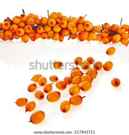 ripen sea buckthorn berries close up  isolated on white background - stock photo