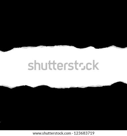 Ripped black and white paper - stock photo