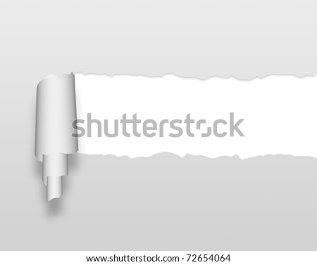 ripped grey paper against a white background - stock photo