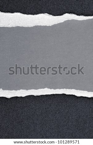 Ripped grey paper. Copy space