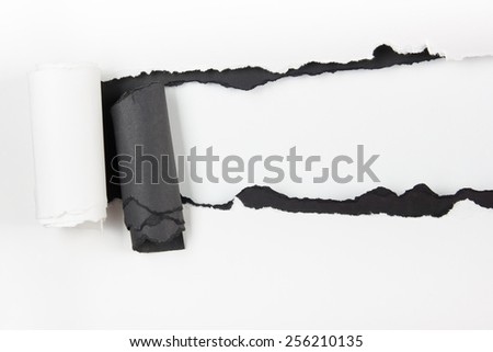 Ripped paper, space for copy. Black and white. Copy space for your text. - stock photo