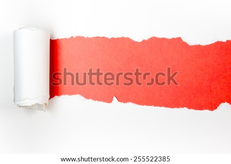 Ripped paper, space for copy. Red background. - stock photo