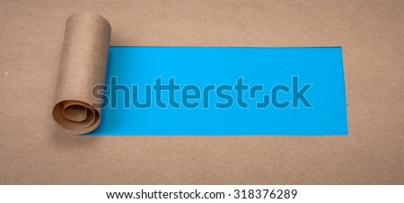 Ripped paper with space for text with blue background - stock photo