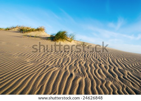 Rippled sand dune with blue sky - stock photo