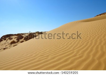 Rippled sand dunes under blue sky, southern Negev Desert, Israel - stock photo