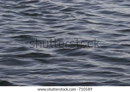 rippled water surface