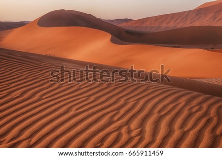 Ripples, patterns and curves of large sand dunes in Namib Desert, Sossusvlei, Namibia.