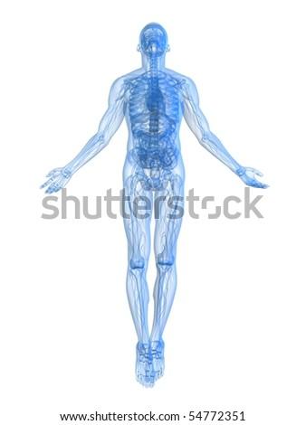 rising body - x-ray - stock photo