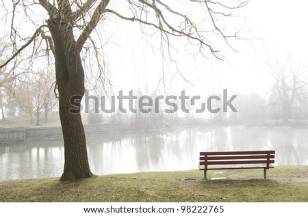 Rising mist over peaceful lake with solitary empty park bench and budding tree silhouetted in foreground. Trees on far shore obscured by fog. Horizontal with copy space. - stock photo