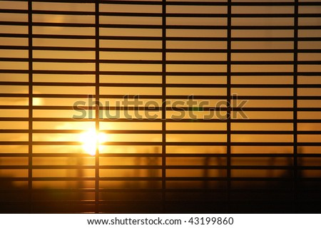 Rising sun behind window blinds - stock photo