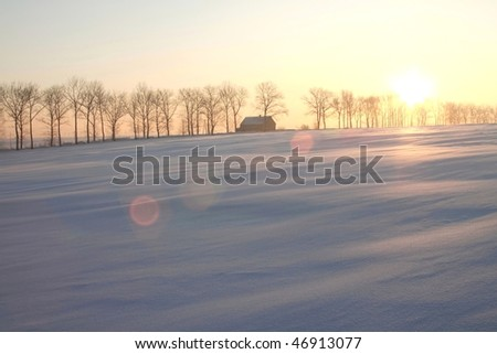 Rising sun shines among the trees and rural house. - stock photo
