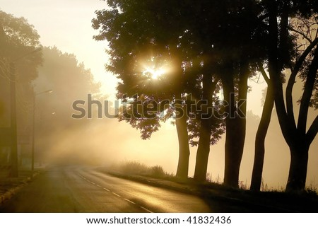 Rising sun shines among the trees at the edge of the road in a small town. - stock photo