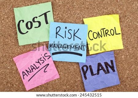 Risk Management Diagram - stock photo